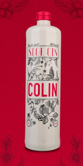 Bouteille de Gin – Sloe Gin